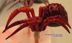 2_spider6.jpg