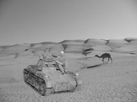 Woestijn-3-VG897_b.jpg